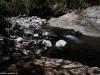 W Parku Narodowym El Imposible; Salwador
