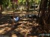 Na campingu w Sunzal Point Hostel; Salwador