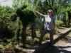W Parku Narodowym Los Volcanes; Salwador