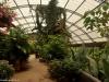 Motylarnia w La Paz Waterfall Gardens; Kostaryka