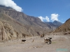 """""""Dworzec autobusowy"""" pod wioską Velinga - kanion Cotahuasi; Peru"""