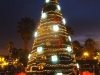 Świąteczna choinka na Plaza de Armas - Arequipa; Peru
