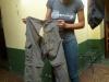 Spodnie Eweliny... po wielu miesiącach podróży ;) - Arequipa; Peru