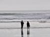 Karekare Beach - Waitakere Rangers Regional Park; Nowa Zelandia
