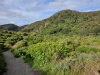 Waitakere Rangers Regional Park; Nowa Zelandia