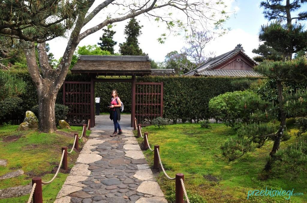 Ogród japoński w Hamilton Gardens - Hamilton; Nowa Zelandia
