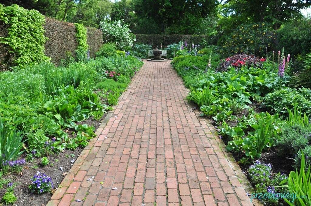 Ogród angielski w Hamilton Gardens - Hamilton; Nowa Zelandia
