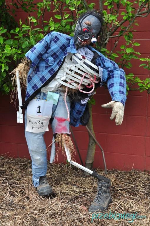 Freaky Fred... w Hamilton Gardens - Hamilton; Nowa Zelandia
