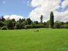 Hamilton Gardens - Hamilton; Nowa Zelandia