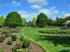 Ogród różany w Hamilton Gardens - Hamilton; Nowa Zelandia